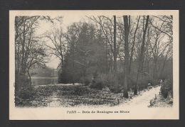 DF / 75 PARIS / BOIS DE BOULOGNE EN HIVER - Parks, Gardens