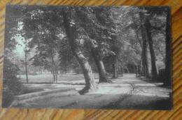 Westerloo Landschap - Paysage - Westerlo