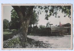 5171    Cpa BANNEUX  : Entrée Du Village    1963 - Sprimont