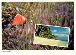 PHILLIPINES - Colorful Underwater World, Karte Gel.mit Marke Aus Singapur - Philippinen