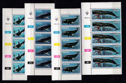 SOUTH WEST AFRICA, 1980, MNH Control Strips, Whales M 466-471 - South West Africa (1923-1990)