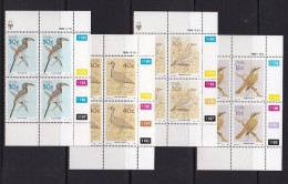 SOUTH WEST AFRICA, 1988, MNH Control Blocks, Birds, M 629-632 - South West Africa (1923-1990)