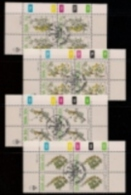 SOUTH WEST AFRICA, 1984, CTO Control Blocks, Spring Flora, M 562-565 - South West Africa (1923-1990)