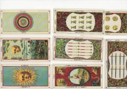 Tarot égyptien - 78 Cartes - Oracle Des Dames - Boite Superbe - Cartes à Jouer