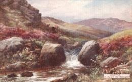 G.H. Jenkins - The Lyd Near Okehampton On Dartmoor In Devon  -  7633 - Tuck, Raphael