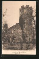 CPA Bex, La Tour De Duin - VD Vaud