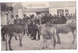 CHALLANS. - Le Champ De Foire Aux Bourrins. - Challans