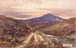 G.H. Jenkins - At Princetown On Dartmoor In Devon  -  7633 - Tuck, Raphael