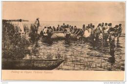 OUGANDA ..-- PULLING IN HIPPO , VICTORIA NYANZA . - Ouganda