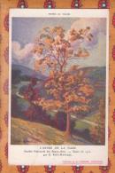 1 Cpa L Arbre De La Naze Paul Manceau - Peintures & Tableaux
