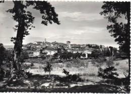 Toscana-siena-montefollonico Veduta Panorama Anni 50 - Italia