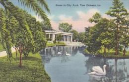 Scene In City Park New Orleans Louisiana