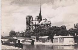 AKFR France Paris Cathedral Of Notre Dame - Arrondissement: 01