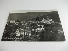 VIOLA PANORAMA - Cuneo