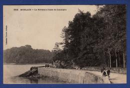 29 MORLAIX La Rivière à L'anse De Lannigou ; Vache - Animée - Morlaix