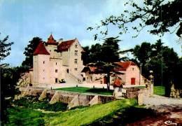 Belle   Cpsm -   Environs De  Lembeye    - Château D 'Arricau Bordes       U410 - Lembeye