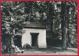 Foto-AK ´Bad Fredeburg = Schmallenberg' (Hochsauerland) - Schmallenberg