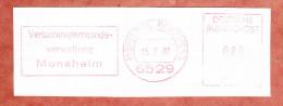 Briefstueck, Absenderfreistempel, Verbandsgemeindeverwaltung Monsheim, 80 Pfg, 1987 (78796) - Lettres & Documents