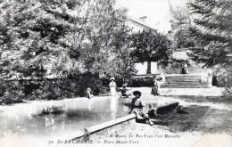 58Bc   83 Saint Zacharie Parc Mont Vert (vue Pas Courante) - Saint-Zacharie