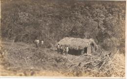 """PER�-LIMA """"RANCHO DE TRONCOS"""" EDITOR DYOTT &Co LIMA E. POLACK-SCHNEIDER CIRCA 1920 NEUVE NO CIRCULADA RARE! GECKO"""