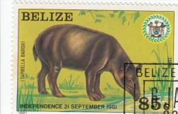 Belize - 1 Val. Used - Belize (1973-...)