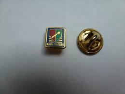 Mini Pin's , Armée Militaire , Rhin Danube - Militaria