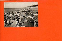 14 DEAUVILLE : Le Bar Du Soleil Sur La Plage (photo De Dimensions 8.8 X 6.5) - Photographie