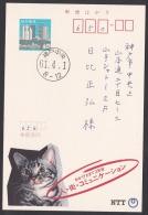 Japan Advertising Postcard, Cat NTT Telephone (jadu1291) - Interi Postali