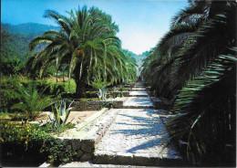 Jardines Alfabia - Bunyola - Mallorca - Escalinata, Pileta Y Surtidor - Mallorca