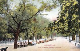GIBRALTAR - The Alameda Gardens (Saloon), Karte Gel.1909, Mit Marke - Gibraltar