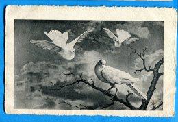 LIPP698, Colombe, Pigeon, , Vouga & Cie Genève, Série 1800/3, Circulée 1909 - Vogels