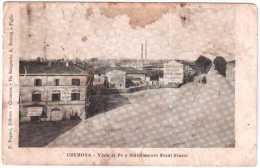 CREMONA VIALE AL PO E STABILIMENTO EREDI FRAZZI VIAGGIATA 1919 - Cremona