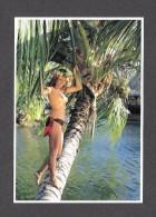 PIN UPS - HAWAII - WONDERFUL WOMEN IN A TREE - NUDE - NUE - GIRLS OF THE SOUTH SEAS - PHOTO A. SYLVAIN - Pin-Ups