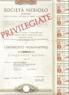 Montecatini Edison Titolo Da 100 Azioni Milano 1967 Doc.149 - Azioni & Titoli