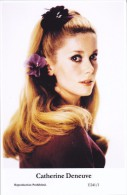CATHERINE DENEUVE - Film Star Pin Up - Publisher Swiftsure Postcards 2000 - Postales