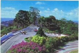 Cpm Mount Faber Singapour - Singapore
