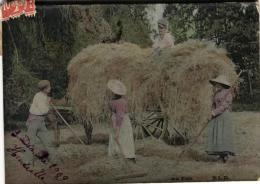 90837 - Agriculture      Ramassage Du Foin - Cultivation