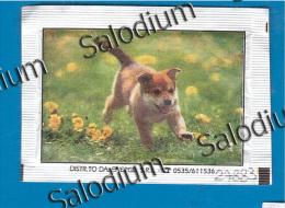 (open 2 Scan)  Cane Dog  -  BUSTINA DI ZUCCHERO VUOTA - Sugar Empty - Sugars