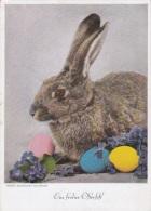 Feldpost WW2: Easter Postcard From Warschau-Okecie In Poland - Grosse Kampffliegerschule 3 P/m 8.4.1941 (G76-43) - Militaria