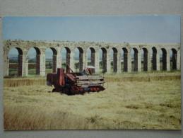 Moissonneuse-Batteuse, Combine, The Ancient Aqueduct Near Nahariya - Israel