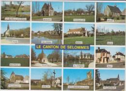 D41 - CANTON DE SELOMMES - MULTIVUES - RHODON/TOURAILLES/EPIAIS/FAYE/RENAY/ROCE/PERIGNY/PRAY/BAIGNEAUX/VILLETRUN ETC... - Selommes
