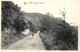 BELGIQUE - NAMUR - VIROINVAL - OLLOY - Route De Vierves. - Viroinval