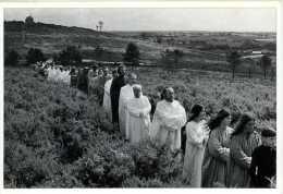56 GUENIN Druides Au Mané Guen Photo GABY LE CAM  L´aventure Carto - Autres Communes