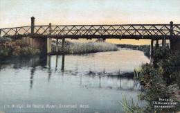 THE BRIDGE - DE BEERS ROAD, SUMERSET WEST, Cape Of Good Hope, Karte Gel.1907 Mit Marke - Sud Africa