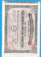 """MOULINS A LIT STRIE -H LONG &Cie -MARSEILLE-Action De 25 Francs  Juin 1955- """"LIBEREE"""" Cachets Fiscaux Au Dos - Industrie"""