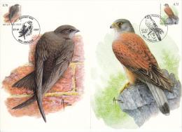 België, Maximumkaarten, Nr 3608/3609, Apus Apus, Falco Tinnunculus, Buzin (6426) - Schwalben