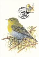 België, Maximumkaarten, Nr 2936, Phylloscopus Sibilatrix, Fluiter, Buzin (6576) - Otros