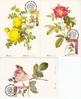 België, Maximumkaarten, Nr 2708/2710 (6632) - Rosen