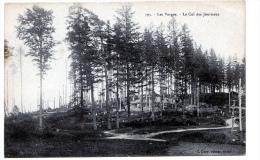 Fraize   (Vosges)  Aux Environs, Col Des Journaux. - Fraize