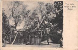 ¤¤  -  EGYPTE   -   LE CAIRE   -   CAIRO  -  The Koly Virgin's Tree    -  ¤¤ - Cairo